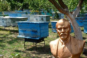 A bust of Vladimir Lenin stands among beehives in Ukraine. — Phil Kliewer