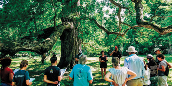 Trail of Death participants gather for a time of lament in the shade of a white oak tree in Illinois that may have sheltered the Potawatomi people during their forced removal. — Peter Anderson/MMN